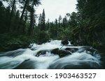 Atmospheric Forest Landscape...