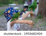 """burrill Lake Nsw Australia..."