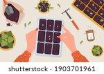 spring seedlings. female hands... | Shutterstock .eps vector #1903701961