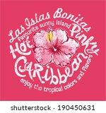 Caribbean Island With Hibiscus...