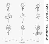 set of flower icons on white... | Shutterstock .eps vector #1904602651