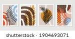 botanical wall art vector...   Shutterstock .eps vector #1904693071