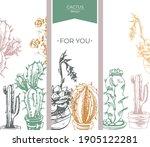 cactus design  set of floral of ... | Shutterstock .eps vector #1905122281