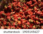Texture Of Dry Red Rose Buds....