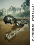 Wildlife And Large Crocodile....