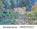 Rustic Wooden Steps To Calm...