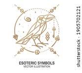 esoteric symbols. vector. thin... | Shutterstock .eps vector #1905702121