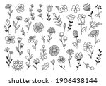 hand drawn flower and branches... | Shutterstock .eps vector #1906438144