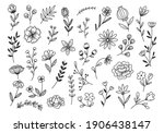 hand drawn flower and branches... | Shutterstock .eps vector #1906438147