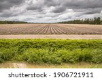 Landscape View Of Arable Land...