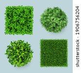 grass top. green ground eco... | Shutterstock .eps vector #1906756204