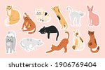 big bundle of stickers with... | Shutterstock .eps vector #1906769404