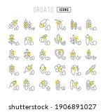 groats. collection of perfectly ... | Shutterstock .eps vector #1906891027