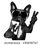 Stock photo french bulldog taking a selfie with cool fancy sunglasses 190698767