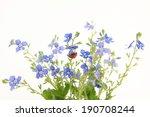 speedwell | Shutterstock . vector #190708244