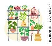 collection of indoor plants... | Shutterstock .eps vector #1907136247
