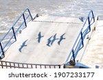 Shadows Of Flying Sea Gulls On...