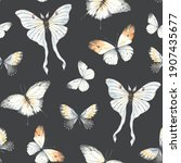 seamless pattern with flying... | Shutterstock . vector #1907435677