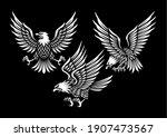 Set Of Eagle Illustration In...