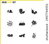 natural icons set with...