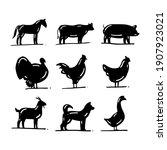 set of farm animal silhouette   Shutterstock .eps vector #1907923021