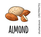 whole and half half almonds... | Shutterstock .eps vector #1907994751