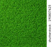 green grass. natural background ... | Shutterstock . vector #190807625