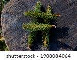 Green Hashtag Sign Symbol Made...