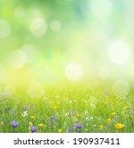 summer background  | Shutterstock . vector #190937411