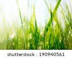 Grass. Fresh Green Grass With...