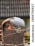 Garden Fence Hoarfrost Autumn...