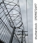 The Barbed Wire Is Covered With ...