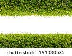 green bush frame. line of green ... | Shutterstock . vector #191030585