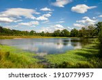 A pond in a landscape of a...