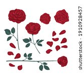 set of drawn roses bright red... | Shutterstock . vector #1910928457