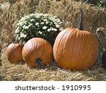 A Pumpkin  Mum  And Straw Fall...