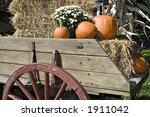 A Beautiful Fall Arrangement Of ...