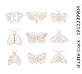 set of hand drawn moth. vector... | Shutterstock .eps vector #1912239904
