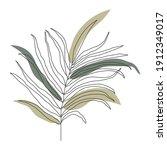 palm leaf line art. contour... | Shutterstock .eps vector #1912349017