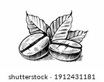 sketch of coffee beans with... | Shutterstock .eps vector #1912431181
