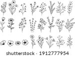vector hand drawn flower and... | Shutterstock .eps vector #1912777954