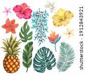 orchid  hibiscus  bluejade ... | Shutterstock .eps vector #1912843921