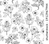pattern flowers vector line...   Shutterstock .eps vector #1912967944
