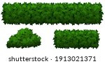 set of green bushes and herbs...   Shutterstock .eps vector #1913021371