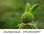 Close Up Easter Bunny Rabbit...