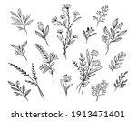 leaf and flower floral ornament ... | Shutterstock .eps vector #1913471401