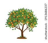 tangerine tree isolated on... | Shutterstock .eps vector #1913686237