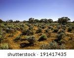 Somewhere  Remote Dry Landscap...