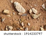 wet ground  yellow soil and... | Shutterstock . vector #1914233797