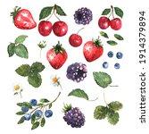 berries set in watercolor.... | Shutterstock .eps vector #1914379894